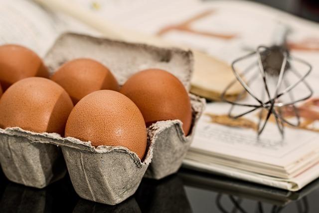 卵,妊娠中,食事,