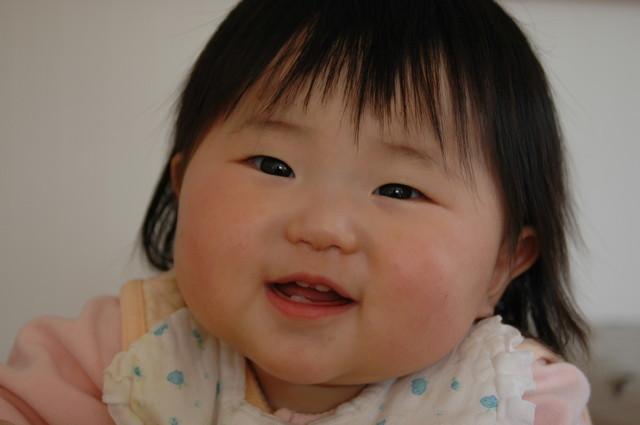 上下の歯,乳幼児,歯,歯磨き