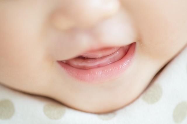 歯が生える前の赤ちゃん,赤ちゃん,歯みがき,