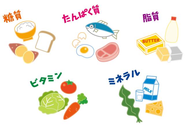 五大栄養素,保育園,おやつ,