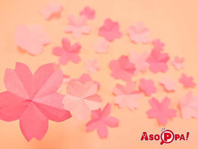 さくらの花びらメイン画像,春,遊び,