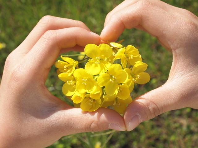 お花をハートで囲む,芸能人,子供,名付け