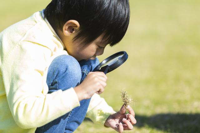 虫眼鏡を使う男の子,幼児,自由研究,