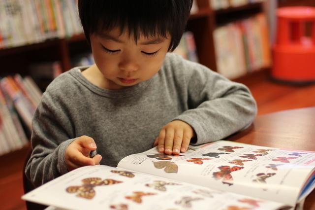 図鑑を読む子供,幼児,自由研究,