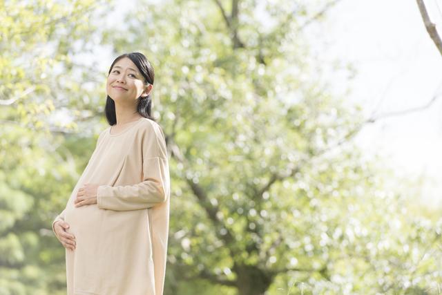 ママの大切なお腹,妊娠31週,胎児,