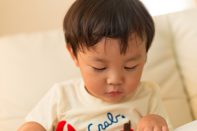 3歳の男の子,Z会,3歳,口コミ