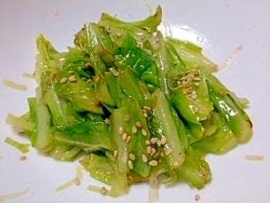 春キャベツのネギ塩ダレナムル,春野菜,レシピ,
