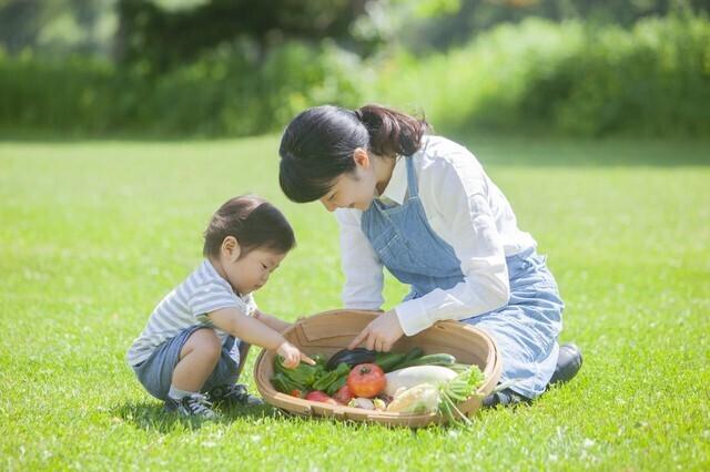 1歳 野菜 食べない,1歳,野菜,食べない