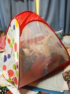 テント 子ども用 ボールハウス,コズレ,プレゼント,当選