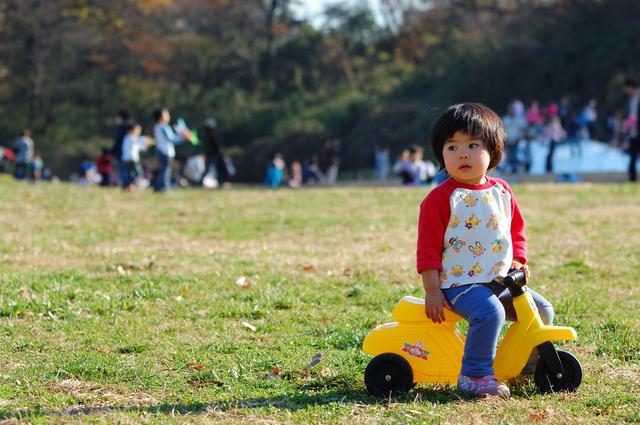 原っぱで三輪車,三輪車,1歳,