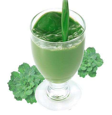 飲みやすい青汁,青汁,プレママ,栄養