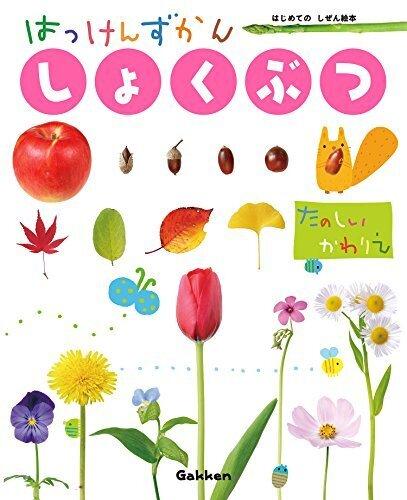 しょくぶつ (はっけんずかん) 3~6歳児向け 図鑑,図鑑,赤ちゃん,