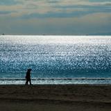片瀬海岸西浜海水浴場
