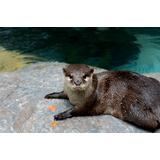 高知県立のいち動物公園