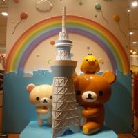 shop_image_t1_172_20121001105457