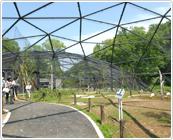 多摩動物公園のウォークインバードゲージ