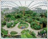 多摩動物公園の昆虫生態園