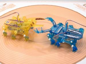 子どもが喜ぶ秋葉原ツクモロボット王国のロボットバトル