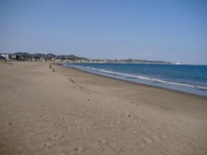 【神奈川・海水浴】いよいよ7月から海開き!オススメを一気に総まとめ