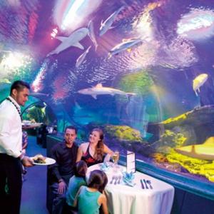 グアム旅行のおすすめスポットの水族館レストランの画像