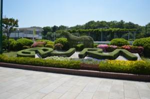 世田谷ふるさと夏祭りの会場である馬事公苑の画像