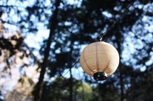 世田谷の夏祭り会場のぼんぼりの画像