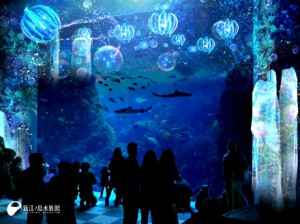 特別企画新江ノ島ナイトアクアリウムの画像