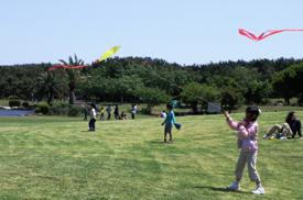 辻堂海浜公園のプールのほかにも芝生広場で楽しめる画像