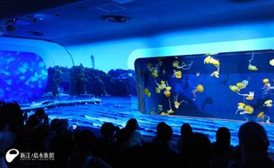 ナイトアクアリウムで有名な江の水の3Dプロジェクションマッピングの画像02