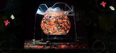 金魚のナイト、アクアリウムが名古屋で開催の画像01