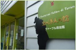都内にある昆虫専門の博物館、ファーブル昆虫館の画像