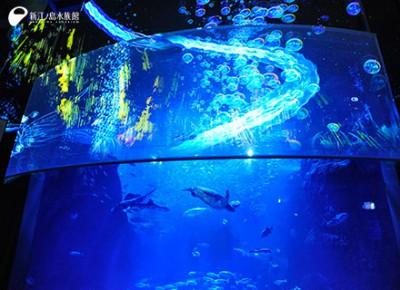 ナイトアクアリウムで有名な江の水の3Dプロジェクションマッピングの画像01