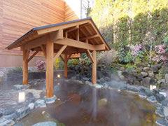 東京の天然温泉・美しの湯館内の画像01