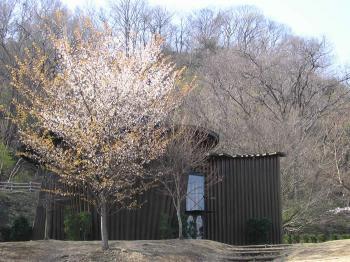 ムーミンの世界を体験できる埼玉・あけぼの子どもの森公園の画像02