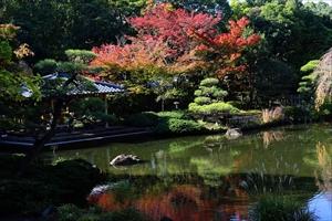 紅葉も観れる神奈川・平塚市総合公園の日本庭園の画像