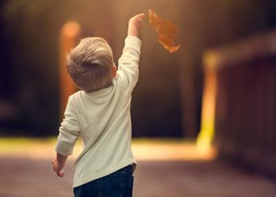 男の子が落ち葉を持っている画像