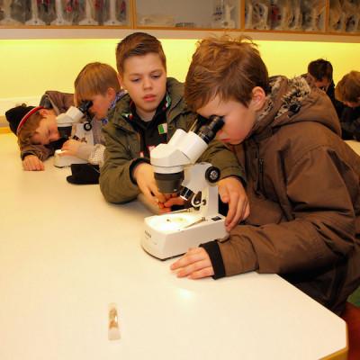 科学や実験を通じて理科が好きになる子どもたちのイメージ画像02