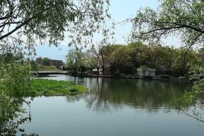 山梨県の観光におすすめな万力公園の画像