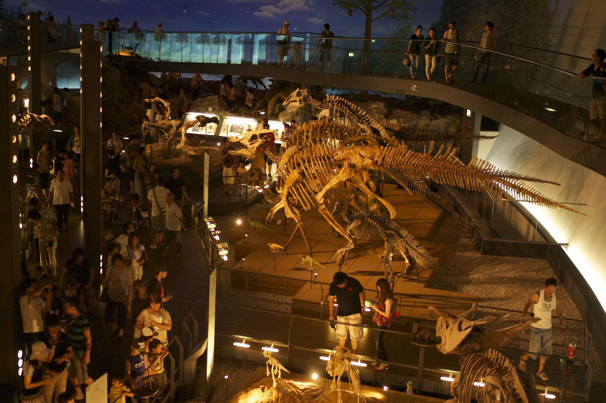 関西・九州地方のおすすめ恐竜博物館12選!大迫力の化石展示! 関連記事 関連するキーワードmomo