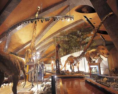恐竜好き必見!子連れで日本全国の素敵な恐竜博物館BEST6!|関東編|群馬県立自然史博物館|群馬県富岡市の画像