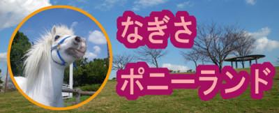 体験型施設で学習におすすめな江戸川区総合レクリエーション公園のイメージ画像01