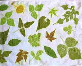 箱根の草木の葉でたたき染め体験のイメージ画像