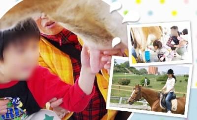 愛知観光地、遊びスポット愛知牧場、乳搾りの画像