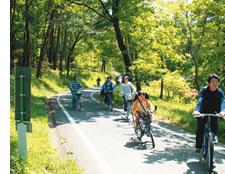 埼玉のサイクリングができる武蔵丘陵森林公園のサイクリングロード画像