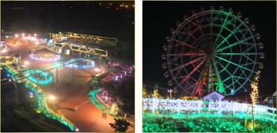 2014年クリスマスの東武動物公園キラキラファームの画像