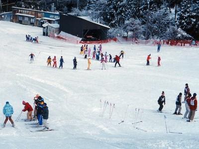 ウッディパル余呉でスキーを楽しもうのイメージ画像