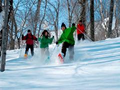 冬の雪を楽しむ子どもの遊びを満喫できるキロロリゾートの画像03