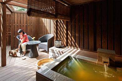 伊豆・箱根に子連れで宿泊の箱根強羅 湯の棲の画像02