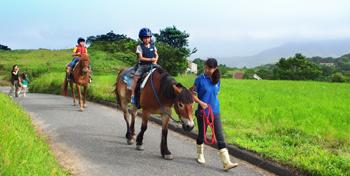 ハーモニーファーム淡路子連れ旅行おすすめ乗馬の画像