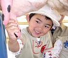 コアラのいる動物園で牛の乳搾りをするイメージ画像